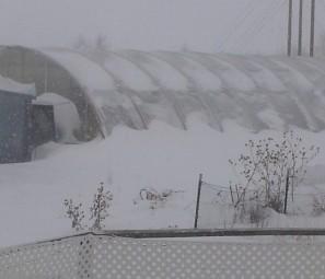 blizzard 2-3-16-2 (2)