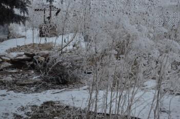 frozen pond 2-3-16