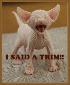 i said trim
