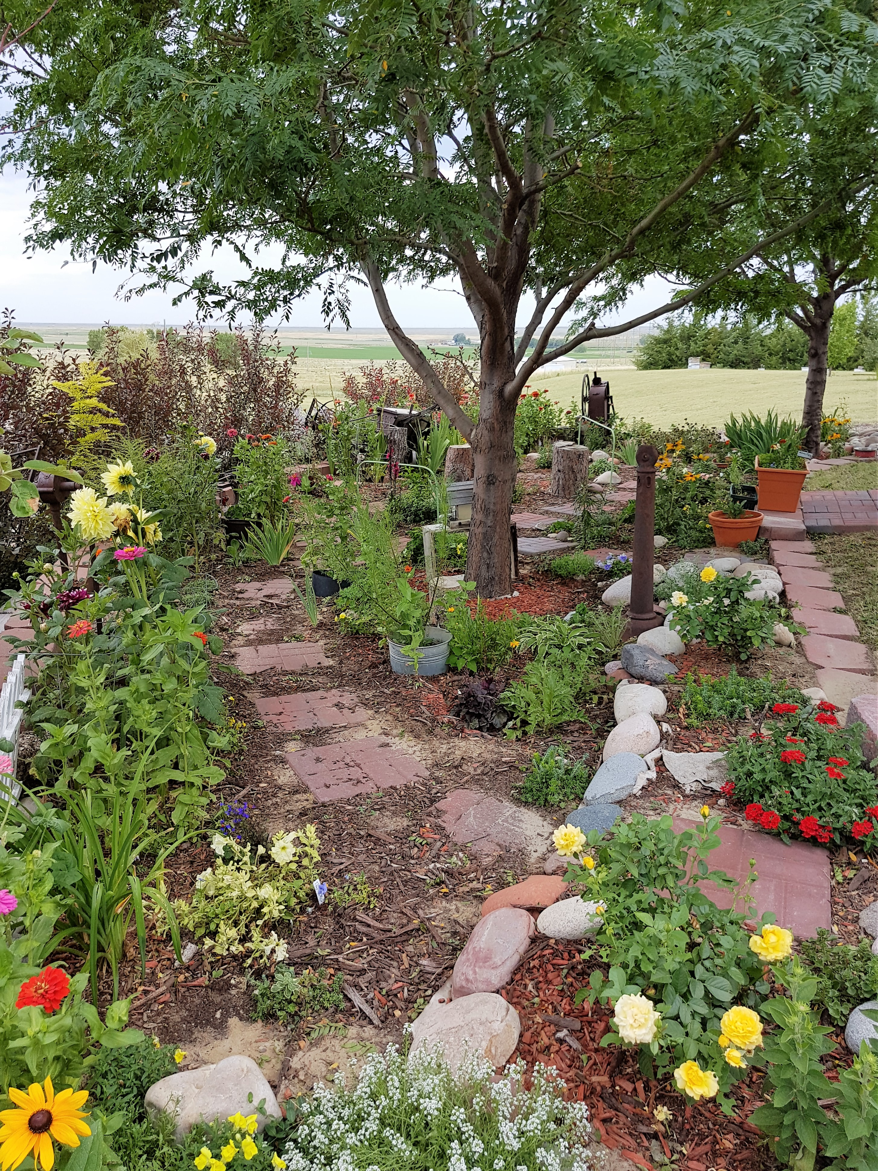 knj garden 2