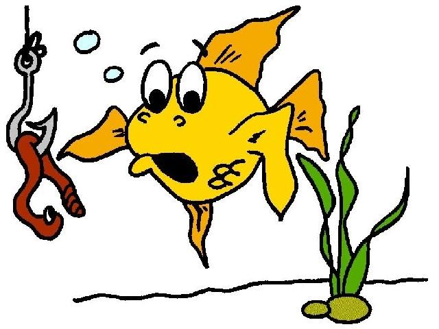 scared fish
