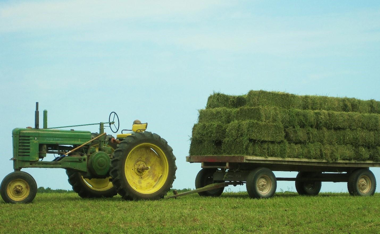 hay-wagon-pic