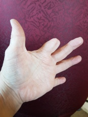 half-finger-hand