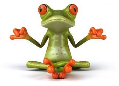 zen-frog