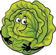 Happy cabbage
