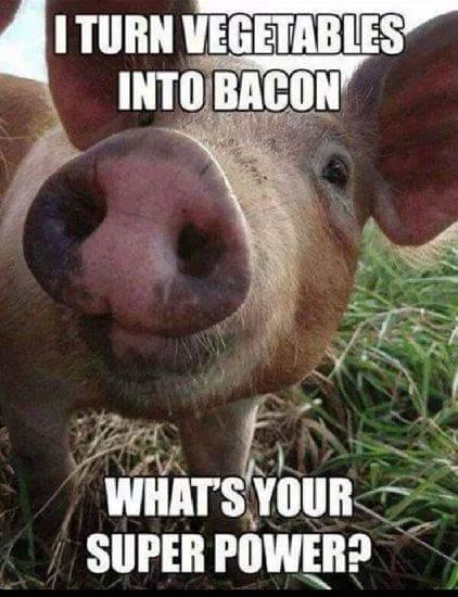 super power bacon