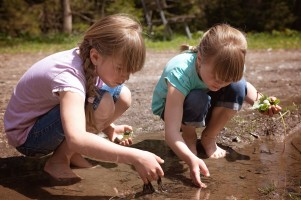 kids playing in creek