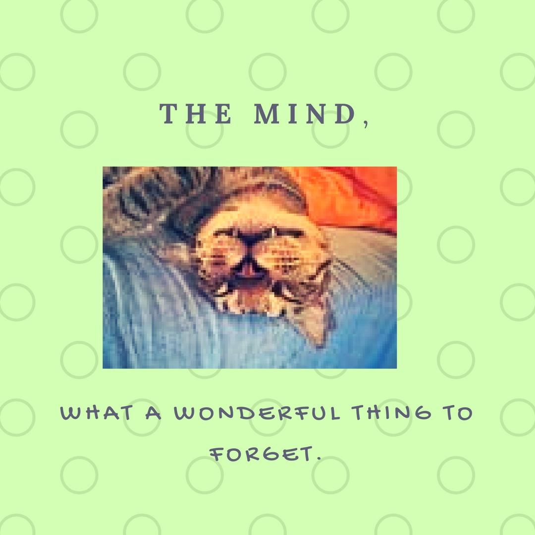 the MIND,