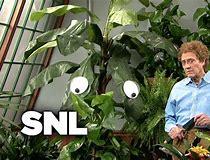 crazy gardener - snl