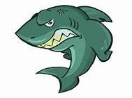 bullhead 3 - shark