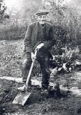 simple gardener